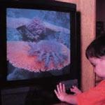 За младенцев всё решает телевизор
