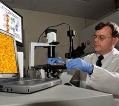 DRACO: Эффективный способ в борьбе с вирусами
