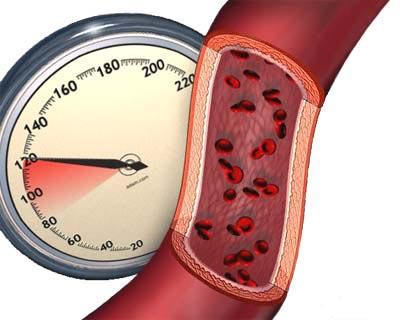 Оксиданты влияют на кровяное давление