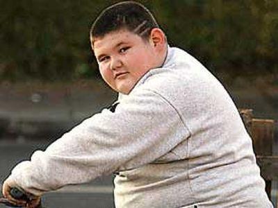 Факторы, определяющие возможность ожирения ребенка